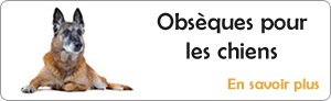 Obs�ques chiens